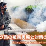 フィリピンでデング熱が猛威!過去の被害実態や渡航者がすべき対策。